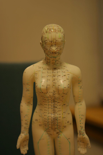 Acupuncture model with female points